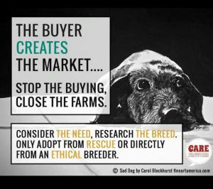 buyers create the market