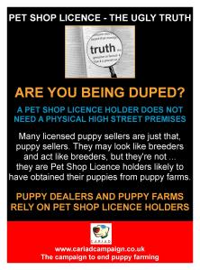 puppy dealers licence