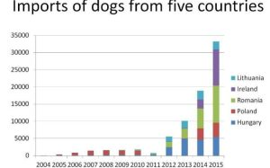 Puppy imports graph, rspca